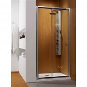 Душові двері Premium Plus DWJ 100