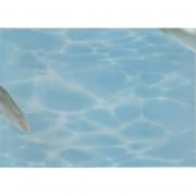 Декор Дельфин 7