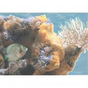 Декор Морской мир 6