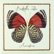 Декор Farfalla Arancione