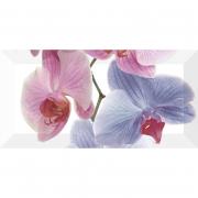 Декор Orchidea 2