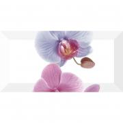 Декор Orchidea 3