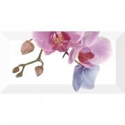 Декор Orchidea 4
