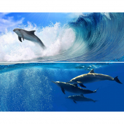 Декор Дельфин-1